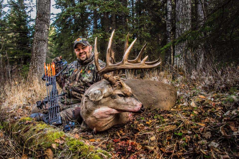 Giant white tail buck shot with a bow